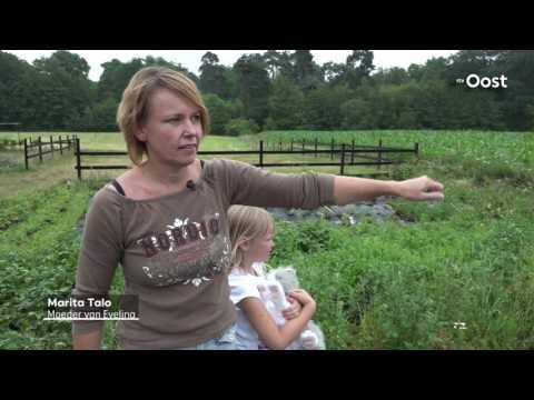 Beet van Duitse herder bepaalt het leven van Evelina (7)