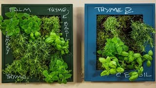 Bring the Outdoors in with a DIY Indoor Herb Garden