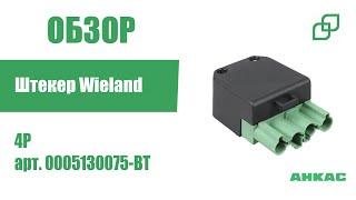 Штекер 4P Wieland арт. 0005130075-BT