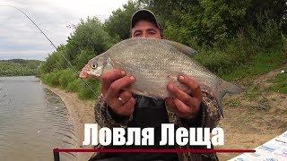 Как ловить леща на реке ока