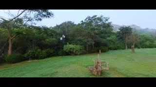 Cinematic FPV- Eden Gardens... Protek 25 BF4.2...