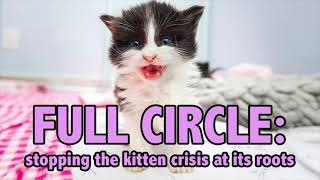 How to Save the MOST Kittens--Using the Full Circle Strategy!