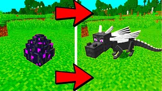How to Hatch The Ender Dragon Egg in Minecraft
