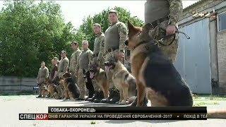 У президентській охороні виховують нове покоління вівчарок-бодігартів