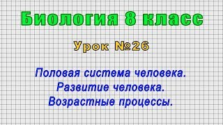 Биология 8 класс Урок 26