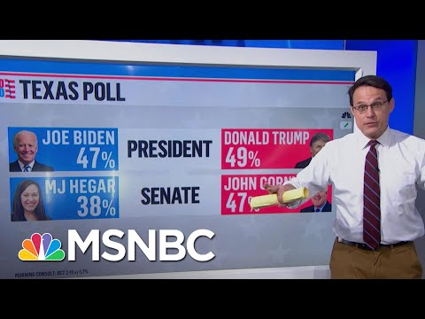 Texan Political Shifts In The Trump Era | Ayman Mohyeldin | MSNBC