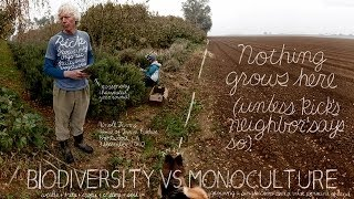 Unconventional Agriculture   The Lexicon of Sustainability   PBS Food