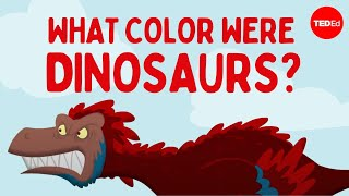 How do we know what color dinosaurs were? – Len Bloch