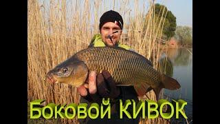 Летняя ловля карпа в украине на кивок