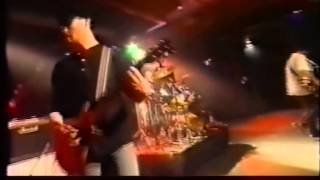 China Drum - Fall Into Place (Live)