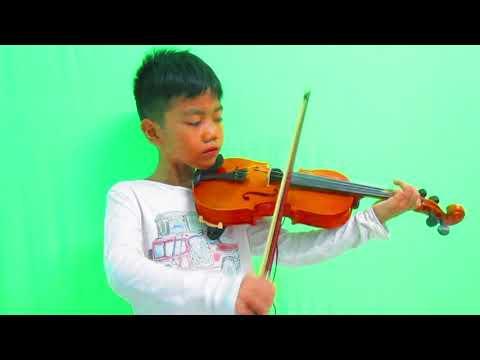 Havana Violin