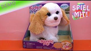 furreal friends hund deutsch - hüpfendes Hündchen Review Bouncin' Puppy elektronisches Spielzeug