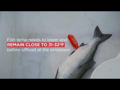 Recipe Finder - Wild Alaska Seafood