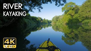4K River Kayaking - Birds Singing - Water Sounds - Paddling A Canoe Relaxing Nature Video - NO LOOP