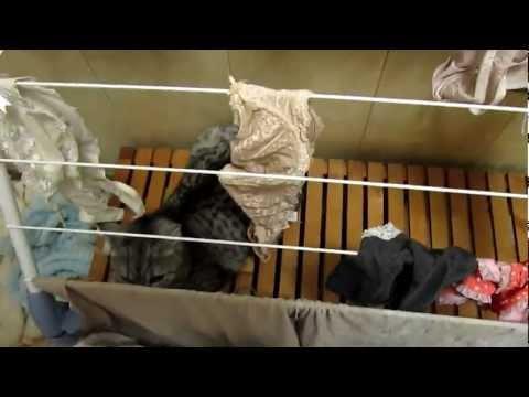 Buhok mask mula sa mga batang nettles