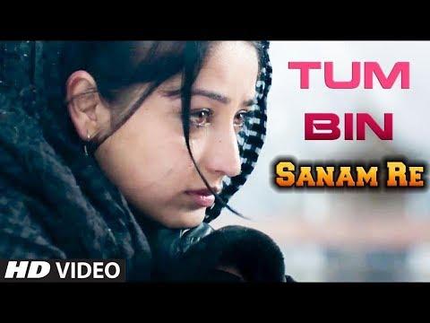 TUM BIN JIYA JAY KAISE COVER VERSION - SANAM RE | PRITHA MAJUMDER | HINDI BOLLYWOOD SONG