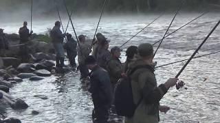 Лицензии для рыбалки на кольском полуострове