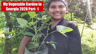 My Vegetable Garden in Georgia 2020 Part- 1  II ജോർജിയയിലെ എന്റ്റെ പച്ചക്കറിത്തോട്ടം ഭാഗം