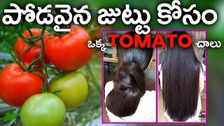 పొడవైన జుట్టు కోసం ఒక్క టొమాటో చాలు ..    Best Benefits  Of Tomato For Skin Hair and Health