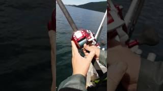 Электрокатушки для рыбалки