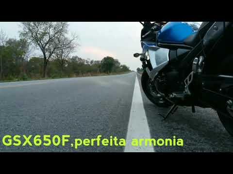 SUZUKI GSX650F-Waldir Santana
