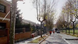 preview picture of video 'Països Catalans. 08-12-2009. Tona. Cursa de Tona. Dimarts, 12.00. 6km.'