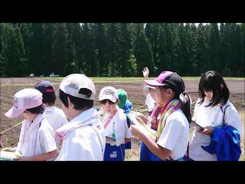 RE-ODATE CH. #148 東館小学校とんぶり編