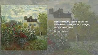 Violin Sonata in Eb, Op. 18