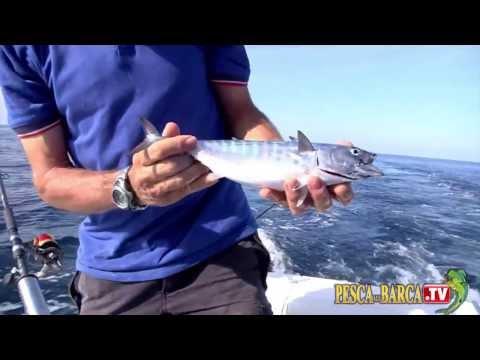 Tecnica di pesca a traina leggera