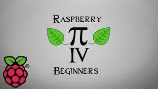 Raspberry Pi   How To Use The GPIO