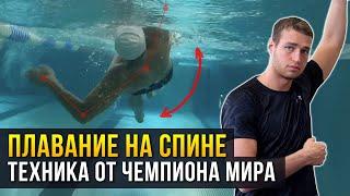 Как плавать на спине?  5 правил от ЧЕМПИОНА МИРА! Техника плавания на спине + ЧЕК ЛИСТ