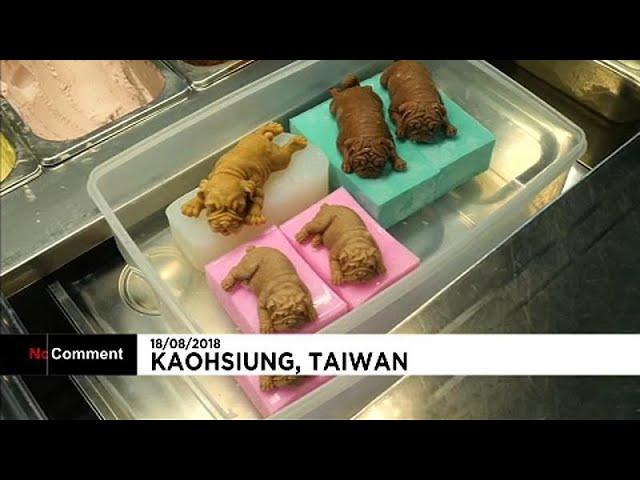 الآيسكريم في تايوان يحتفي بالجراء