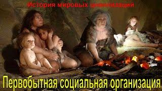 Первобытная социальная организация (рус.)
