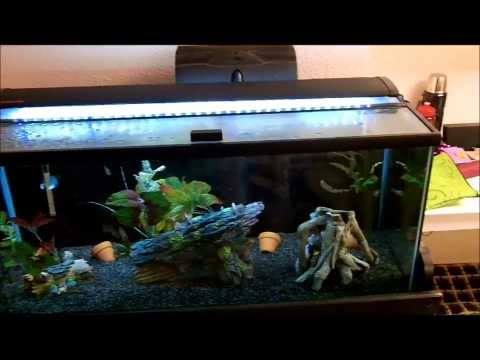 Marineland Single Bright LED Aquarium Light 36″ – 48″ Review