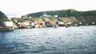 Damhnait Doyle,  As I Roved Out.wmv