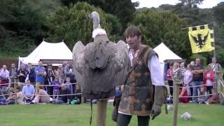 Warwick Castle - Birds of prey display show