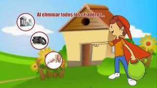 Campaña de prevención contra dengue y chikungunya
