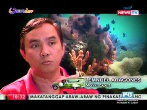 Iyon ay kung hindi mo gamutin ang isang halamang-singaw sa singit sa mga lalaki