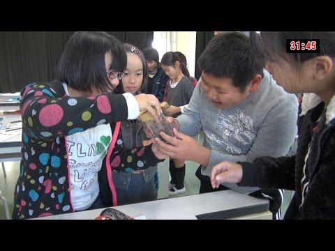 Toyota Elementary School