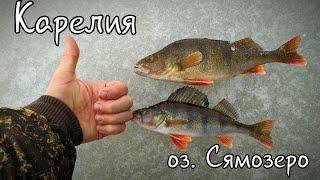 Рыбалка в карелии на сямозере форум