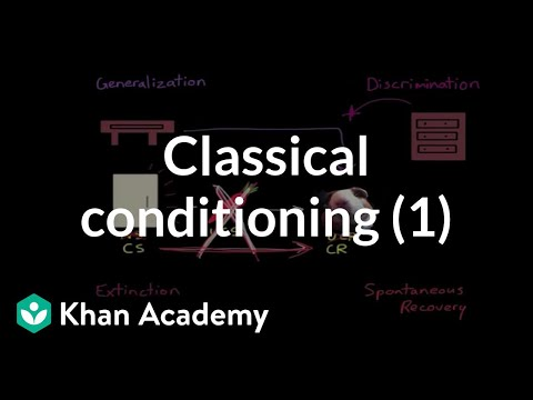 Classical conditioning Extinction, spontaneous recovery