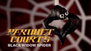 """Parquet Courts – """"Black Widow Spider"""""""