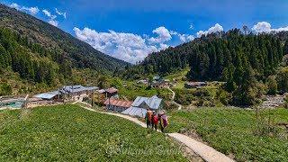 Sandakphu - Phalut - Gorkhey - Srikhola Trek