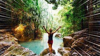 Meditation Music: 10 Min Jungle Voice, Positive Energy, Awarness, Chakra Healing【Sound of Nature】
