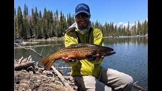 Early season alpine lake fly fishing in Utah.