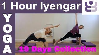 One Hour Iyengar Yoga Class - 19 Days of Yoga Collection