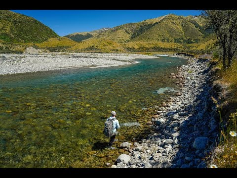 Fly fishing New Zealand - Rising expectations.