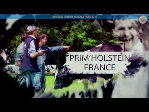 Voir la vidéo : Replay - CONCOURS PRIM'HOLSTEIN Lundi 27 février Partie/1