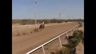 preview picture of video 'EL MARISKAL VS EL COQUETO.mkv'