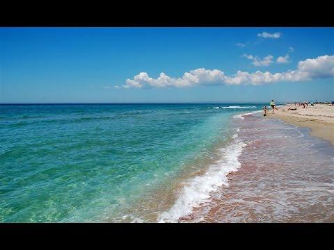 Шум #прибоя.  Звуки #моря. Слышны крики чаек.
